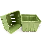 Berry Baskets -Light Green 10pc