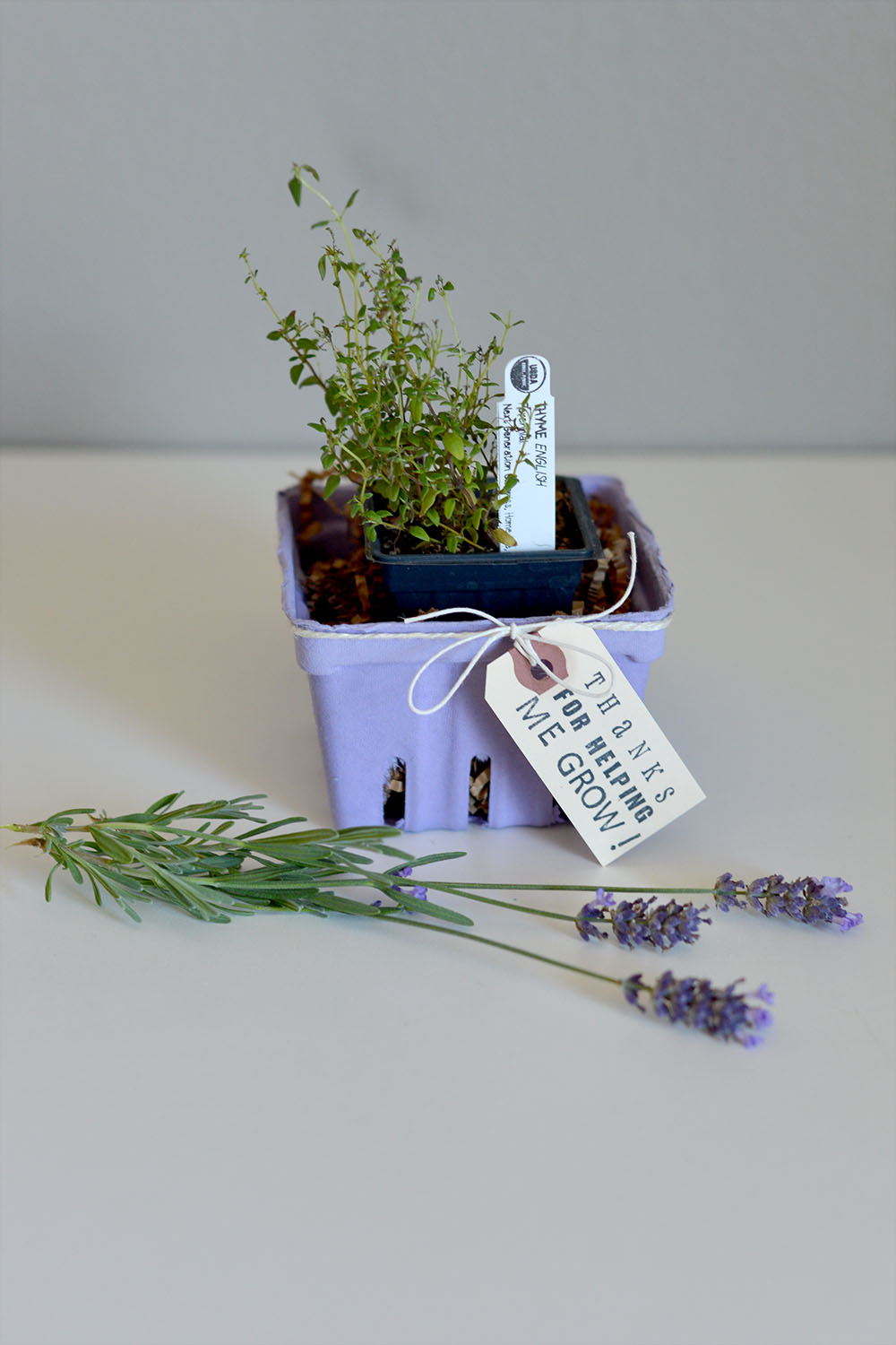 Lavender berry basket teacher thank you gift idea