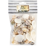 Sea Shells -White Mix