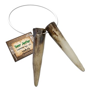 Deer Antler Tips
