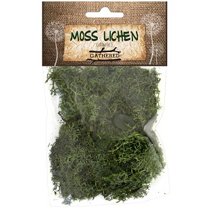 Moss Lichen -Dark Green 1oz
